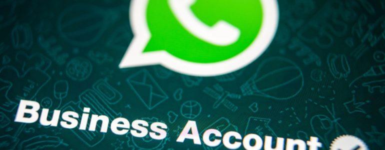 WhatsApp Business: la nuova applicazione semplificherà il modo in cui le attività comunicano con i propri clienti