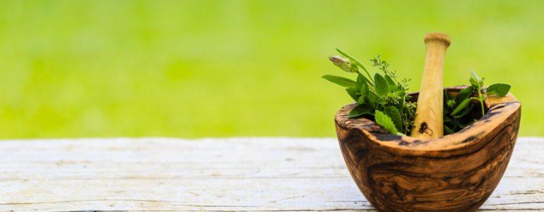 I segreti dell'Erboristeria: come curare il corpo con le proprietà benefiche delle erbe naturali
